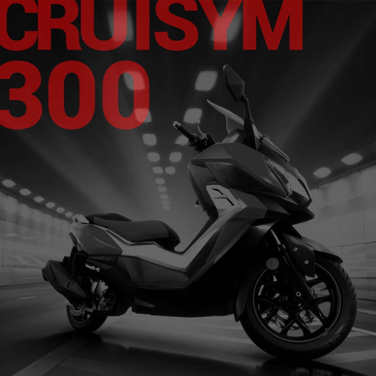 SYM Static Block 2019-CRUISYM 300